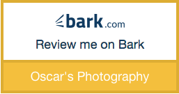 Bark.com reviews badge
